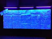 夜光3D藝術展:a02.jpg