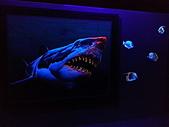 夜光3D藝術展:a15.jpg