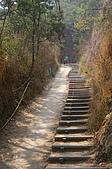 大社觀音山:某處陡坡