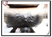 09-0823彰化一日遊:IMG_0018.jpg