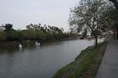 2014.02.12_月津港燈會:DSC09483.JPG