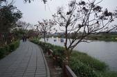 2014.02.12_月津港燈會:DSC09490.JPG
