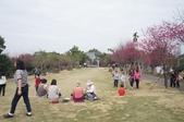 2014.02.02_劍湖山賞花:DSC08947.JPG