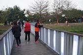 2014.02.12_月津港燈會:DSC09470.JPG