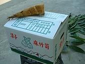 蔬菜-麻竹筍:DSCF0179.JPG