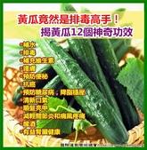 日誌貼圖:黃瓜12個神奇功效.jpg