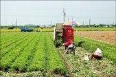 日誌貼圖:學者憂自經區 我農產值年減1700億.jpg