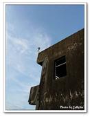 海邊的大象:1547545003.jpg