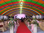 會場佈置:DSCN0508紅地毯旁花柱