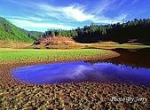 台灣之美:太平山蒼峰湖.jpg