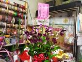 石斛蘭盆栽組合:_20131025石斛蘭組合 (4).jpg