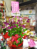石斛蘭盆栽組合:_20131025石斛蘭組合 (5).jpg