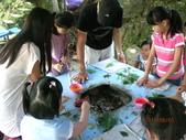 2011暑期夏令營0803淡江農場:IMG_2498.JPG