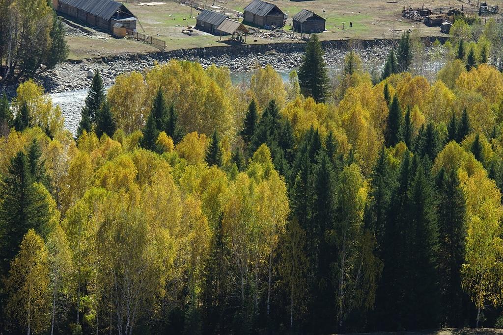 詭美魅麗北新疆之二:DSC09918.jpg