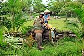 15-5-峇里島-Safari Marine Park野生動物園:IMG_1191峇里島-Safari Marine Park野生動物園.jpg