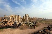 19-5敘利亞Syria-阿帕美古城APAMEA(列柱群):IMG_5640敘利亞Syria-阿帕美古城APAMEA(列柱群).jpg