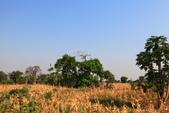 南部非洲32天探索之旅-馬拉威MALAW 6-5-5里旺國家公園狩獵巡禮:IMG_1872.JPG