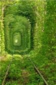 神奇美麗的路徑 ~ amazing paths:ATT000696.jpg