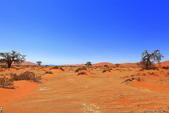 納米比亞紅色沙漠-1200公尺世界最高的-就在死亡谷上方:IMG_6976.jpg