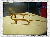 4.中國蘇州_蘇州博物館:DSC02033蘇州_蘇州博物館.jpg