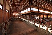 19-17塞普路斯-帕佛斯PAROS-考古遺跡區域UNESCO 1980年-海神之家:IMG_4269塞普路斯-拉那卡-PAROS考古遺跡區域UNESCO-酒神之家HOUSE OF DIONYSUS.jpg