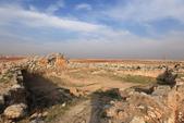 19-5敘利亞Syria-阿帕美古城APAMEA(列柱群):IMG_5643敘利亞Syria-阿帕美古城APAMEA(列柱群).jpg