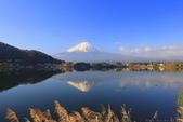 日本12天賞紫藤...VIP團之旅34-2 富士山我看清楚了你...:A81Q6222.JPG