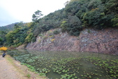 日本四國人文藝術+楓紅深度之旅-栗林公園 53-8:A81Q9723.JPG