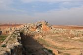 19-5敘利亞Syria-阿帕美古城APAMEA(列柱群):IMG_5644敘利亞Syria-阿帕美古城APAMEA(列柱群).jpg
