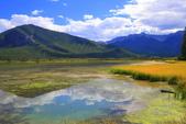 加拿大洛磯山脈19天度假自助遊-班夫鎮Banff Vermilion Lakes(硃砂湖):A81Q9074.JPG