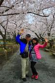 日本九州春櫻尊爵全覽之旅-1_福岡市舞鶴公園-綻放春櫻:A81Q5726.JPG
