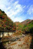 日本四國人文藝術+楓紅深度之旅-別府峽楓葉散策53-23:A81Q0023.JPG
