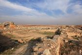 19-5敘利亞Syria-阿帕美古城APAMEA(列柱群):IMG_5645敘利亞Syria-阿帕美古城APAMEA(列柱群).jpg
