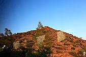 19-8塞普路斯 CYPRUS-聖十字山:IMG_3272塞普路斯 CYPRUS-聖十字山.jpg