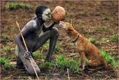 最原始的人類部落Tribus_del_Olmo:圖片8.jpg