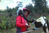 美女們被狐猴溫馨親切有禮的親親_在馬達加斯加-狐猴島Lemur Island:IMG_0358.jpg