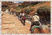 15-希臘Greece聖特里尼SANTORINI費拉碼頭騎驢爬懸崖:IMG_7354.jpg
