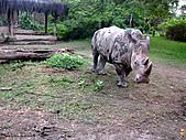 15-5-峇里島-Safari Marine Park野生動物園:IMG_6557峇里島-Safari Marine Park野生動物園.jpg