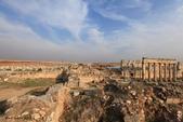 19-5敘利亞Syria-阿帕美古城APAMEA(列柱群):IMG_5646敘利亞Syria-阿帕美古城APAMEA(列柱群).jpg