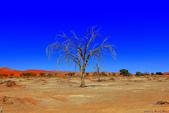 納米比亞紅色沙漠-1200公尺世界最高的-就在死亡谷上方:IMG_6975.jpg