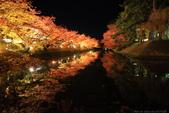 日本北關東東北行-8弘前城-櫻花紅葉園區驚豔楓紅.....:A81Q0686.JPG