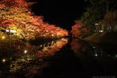 日本北關東東北行-8弘前城-櫻花紅葉園區驚豔楓紅.....:A81Q0693.JPG