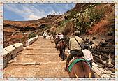 15-希臘Greece聖特里尼SANTORINI費拉碼頭騎驢爬懸崖:IMG_7356.jpg