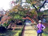日本四國人文藝術+楓紅深度之旅- 秋之岡山後樂園53-44:IMG_7695.JPG