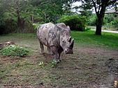 15-5-峇里島-Safari Marine Park野生動物園:IMG_6558峇里島-Safari Marine Park野生動物園.jpg