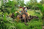 15-5-峇里島-Safari Marine Park野生動物園:IMG_1193峇里島-Safari Marine Park野生動物園.jpg