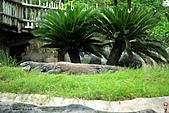 15-5-峇里島-Safari Marine Park野生動物園:IMG_1158峇里島-Safari Marine Park野生動物園.jpg