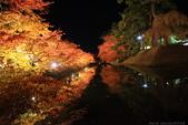 日本北關東東北行-8弘前城-櫻花紅葉園區驚豔楓紅.....:A81Q0688.JPG