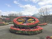 日本關西賞櫻深度之旅-鳥取花迴廊42-8:IMG_2264.JPG