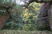 日本四國人文藝術+楓紅深度之旅-栗林公園 53-8:A81Q9716.JPG